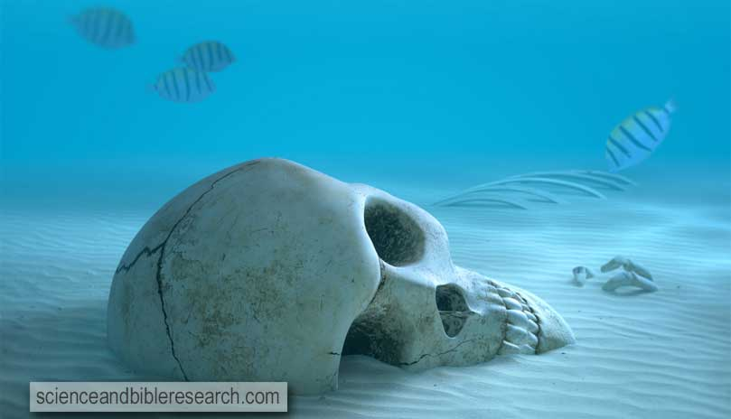 Skull on sandy ocean bottom (Photo by JohanSwanepoel)
